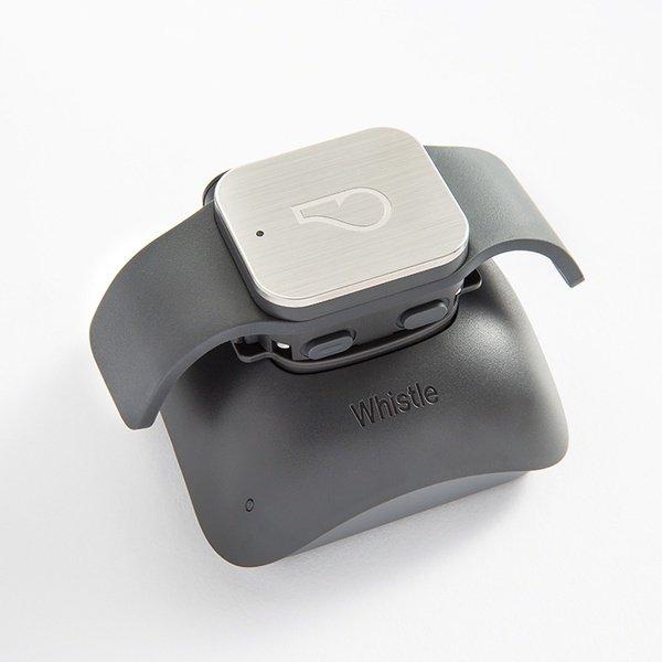 Гаджет Whistle GPS трекер для питомцев
